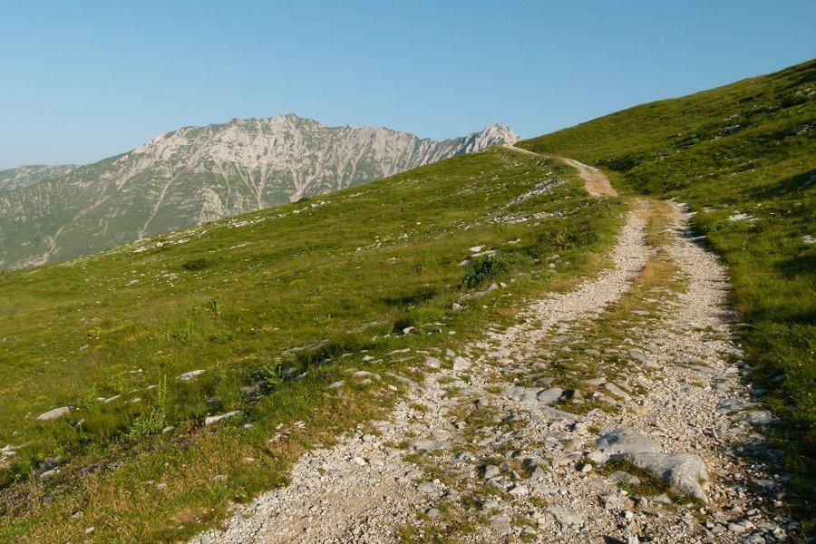 sentiero dei fiori bergamo italy - photo#29