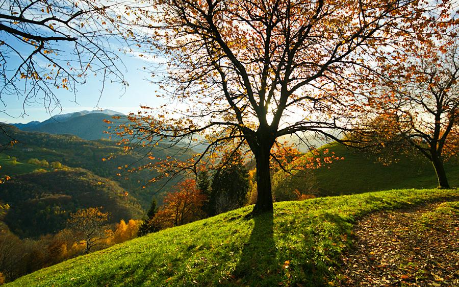 Preferenza Valle Brembana • I colori della natura in media Valle Brembana  ME59